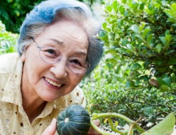 Effective utilization of minerals (zinc, selenium) in Rheumatoid arthritis patients