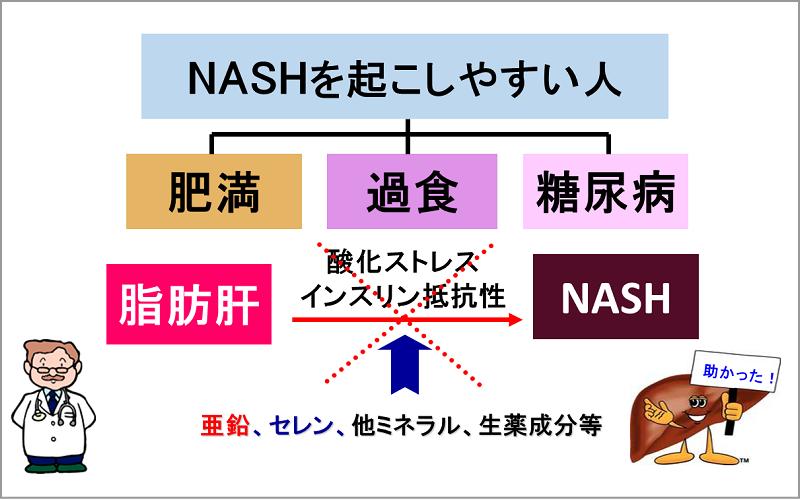 ミネラルの配合成分が、NASHへの進行を阻止します!