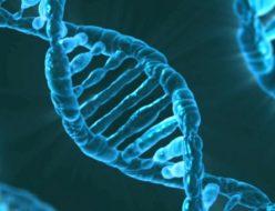がん遺伝子とがん抑制遺伝子